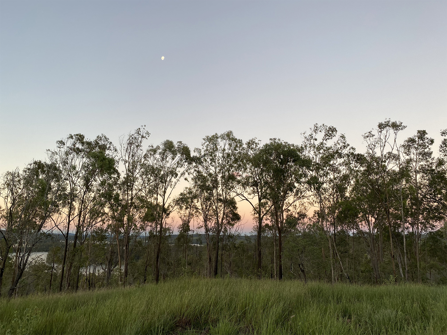 Wander at The Overflow 1895, Gold Coast Hinterland Eco Off Grid Accommodation